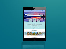 Brochure Website Plus package