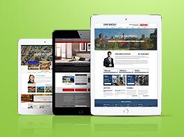 Brochure Website Premium package